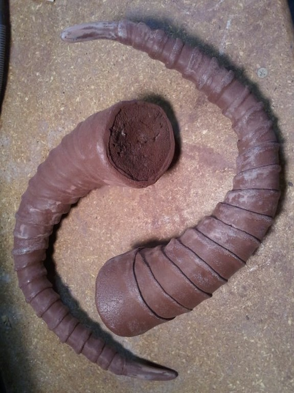 Draugr Horns Primed